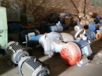 AAA166 Electric Motors
