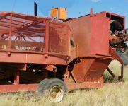 MAA028 Diggers Pan 1